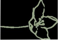 hawaianflower